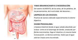 Sistema digestivo Moderación y Limpieza